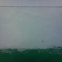 Tlačené sklo do interiérových dveří - Katedral