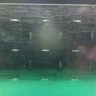Tlačené sklo do interiérových dveří - Maris