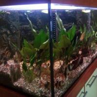 Výroba akvária 2