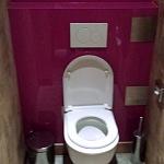Barvené sklo Lacobel - toaleta 11