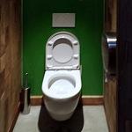 Barvené sklo Lacobel - toaleta 6