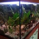 Výroba akvárií a terárií 9