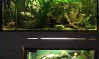 Výroba akvária – prodej 2
